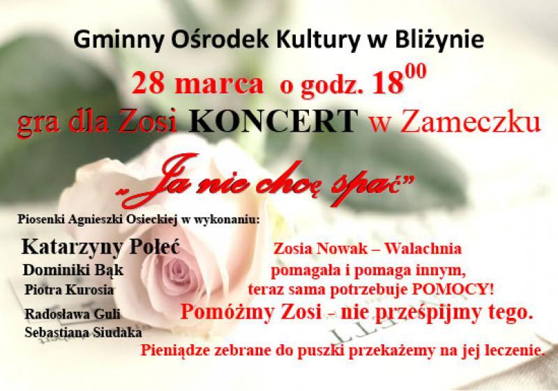 Koncert 28.03.2015