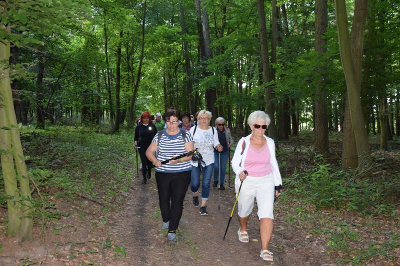 Zdrowy aktywny styl życia seniorów - wyprawa do Stęszewa
