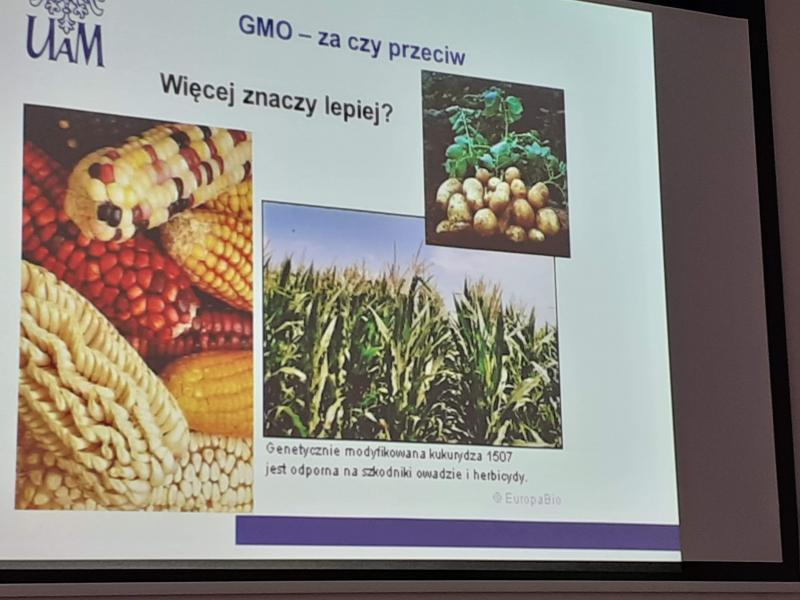 Rośliny modyfikowane genetycznie GMO?