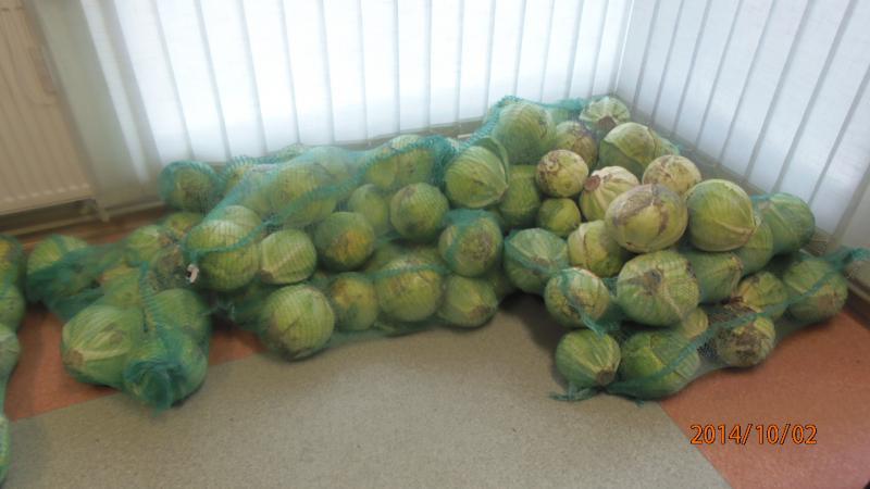 Warzywa i owoce dla najuboższych
