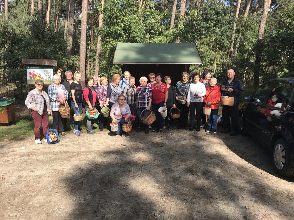 wspólne zdjęcie Seniorów w lesie